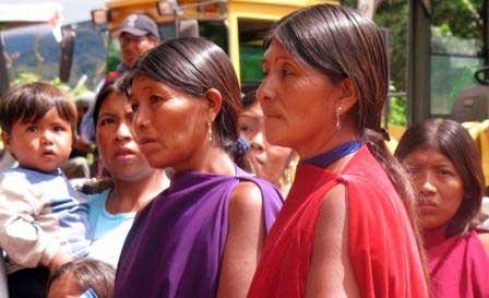 Resultado de imagen para tapietes argentina