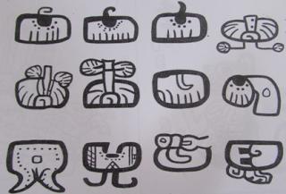 Arrugas en pallares - jeroglíficos Mayas